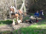 20150412 JC Woodland trust Bovey logging event (2)